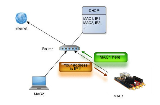 dhcp-01